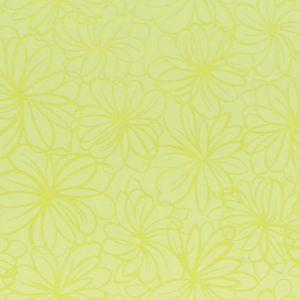 Обои AS Палитра Крокус 10076-17 виниловые на бумаге 0,53х10,05м зеленый