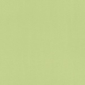Обои Rasch Hyde Park 411829 виниловые на флизелине 0,53x10,05м зеленый