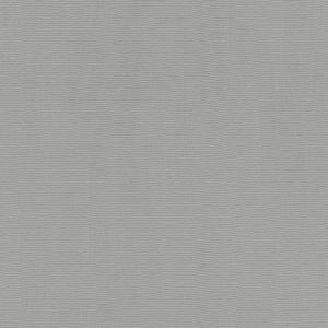 Обои Rasch Hyde Park 411966 виниловые ГТ на флизелиновой основе 0,53x10,05м серый