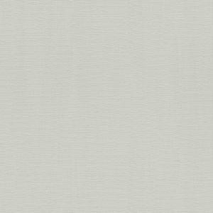 Обои Rasch Hyde Park 411874 виниловые ГТ на флизелиновой основе 0,53x10,05м серый