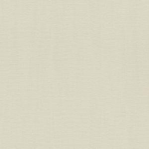 Обои Rasch Hyde Park 411898 виниловые ГТ на флизелиновой основе 0,53x10,05м серый