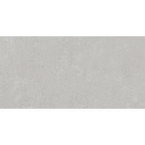 Керамогранит DD593100R Про Фьюче св.-серый обрезной 60х119,5