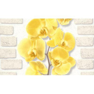 Обои Аспект Орхидея 10107-23 виниловые на бумаге 0,53х10,05м желтый