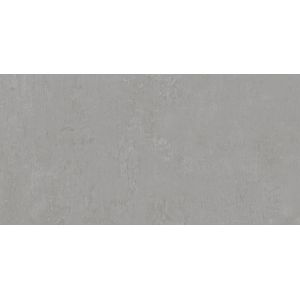 Керамогранит DD593400R Про Фьюче серый обрезной 60х119,5